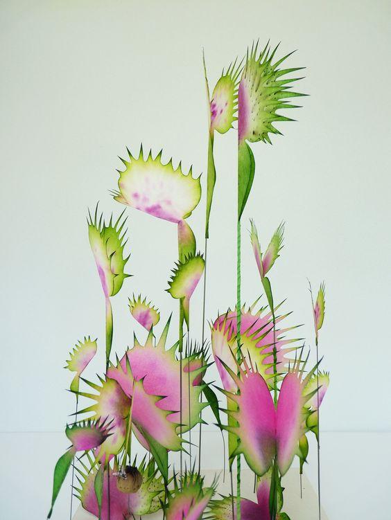 // Fleurs Carnivore, Lyndie Dourthe