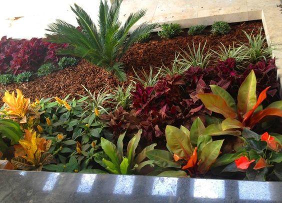 jardn de la terrazabar familiar jardines de estilo