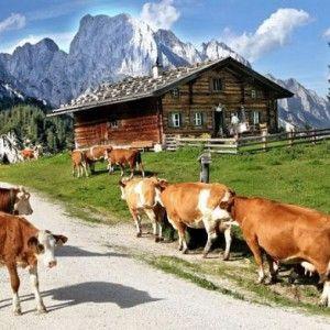 Vor 200 Jahren im Salzburger Saalachtal. Eine Wanderung in die Vergangenheit. #wandern #weitwandern #weitwanderwege #salzburg #saalachtal #klammen #mehrtagestouren #österreich