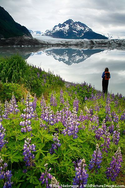 Sherida Glacier, Alaska