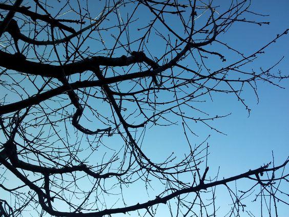 Solduno sky