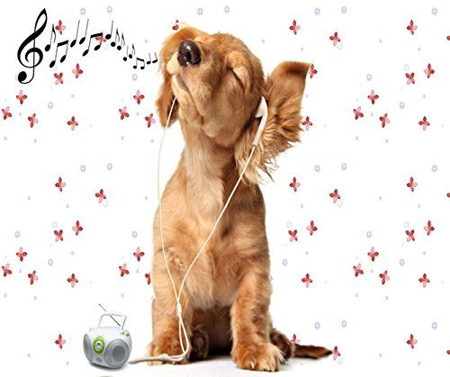 Musical Dog Mouse Pad You Have Gifts http://www.amazon.com/dp/B00NTCM2HU/ref=cm_sw_r_pi_dp_wWkiub0W83BND