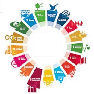 SDGs For Everyone