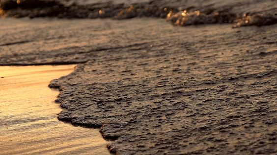 Beachfront B Roll Sunset Waves Close Up Free To Use Hd Stock Video Footage Stock Video Video Footage Beachfront