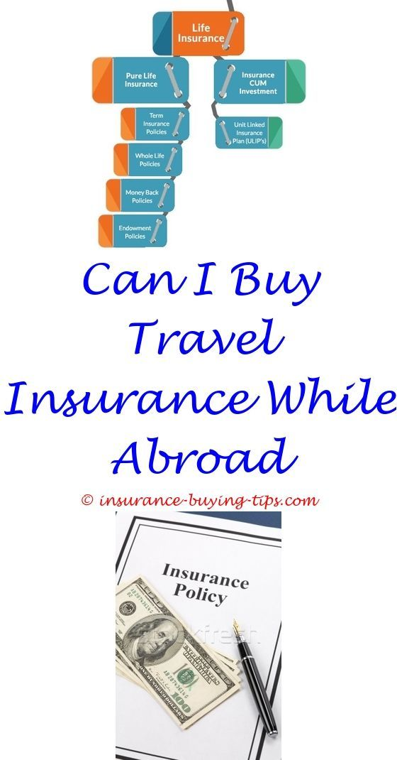Travel Insurance How To Travel Well With Young Children Click