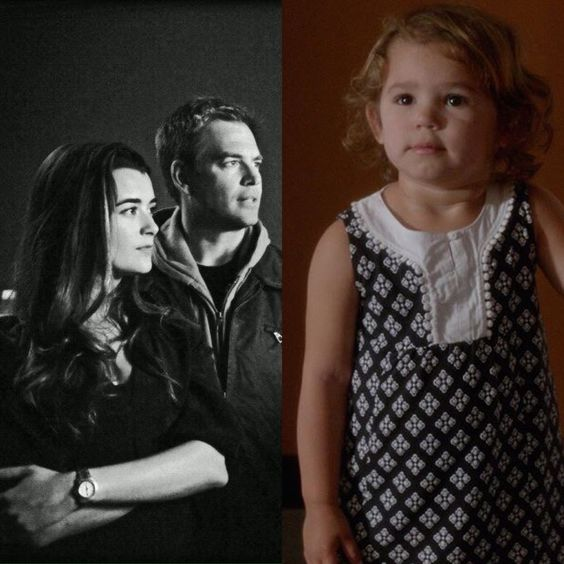 The dinozzo David family.