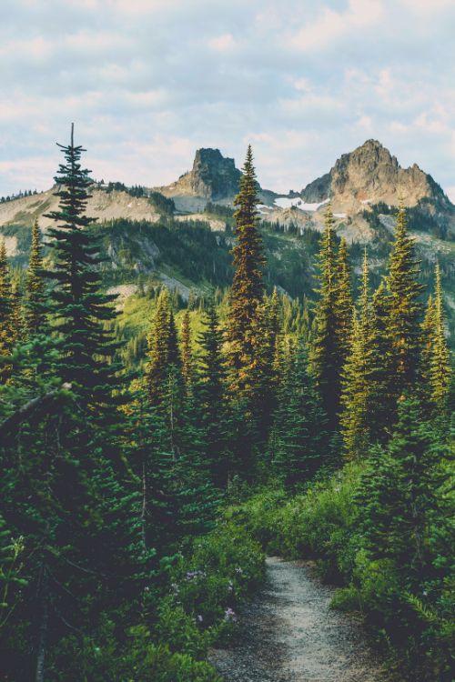 mountain scene: