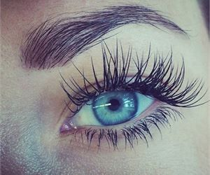 Benefits of Castor Oil For Thickening and Regrowing Your Hair, Eyebrows And Eyelashes