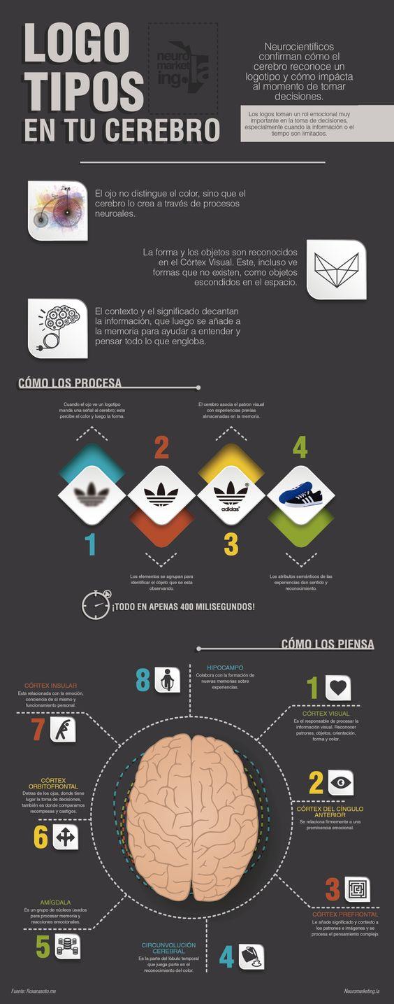 Neuromarketing: cómo impactan los logos en tu cerebro #infografia