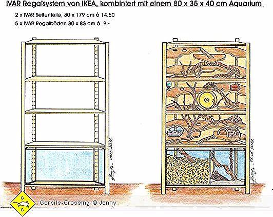 Terrariwm In 2020 Hamster Cages Hamster Diy Degus