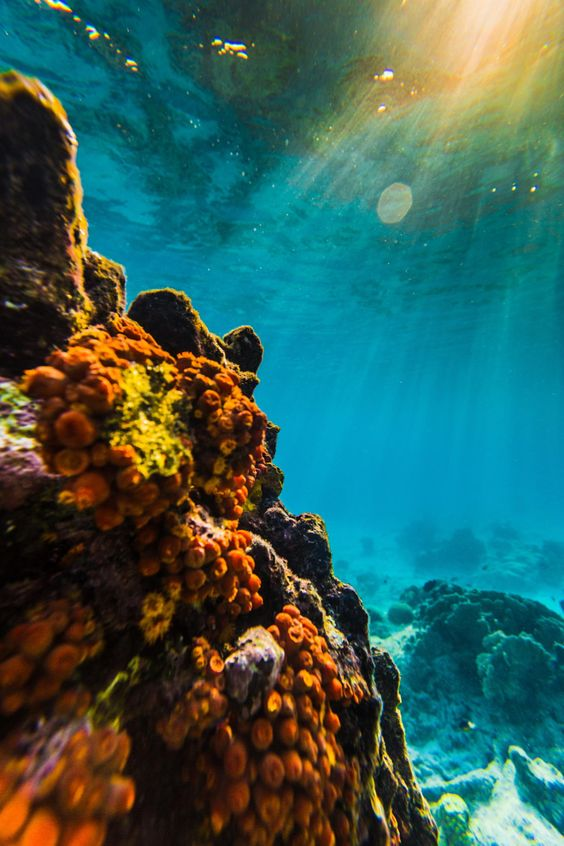 Underwater light by Andy Troy / 500px