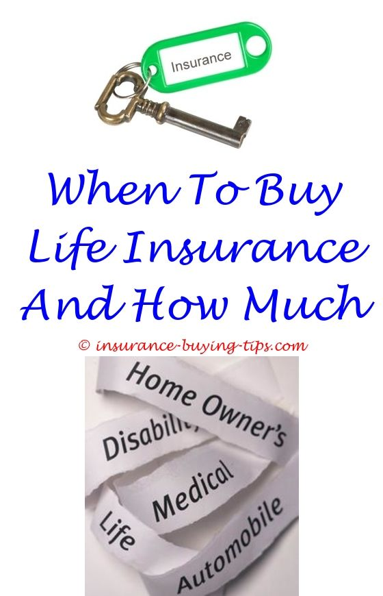 The Important Reasons Why You Need Life Insurance Insurance