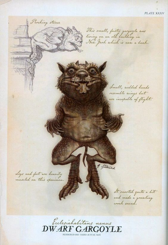 Dwarf Gargoyle, by Tony DiTerlizzi    (From Arthur Spiderwick's Field Guide):