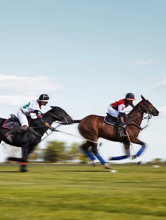 Argentina's National Obsession With Polo