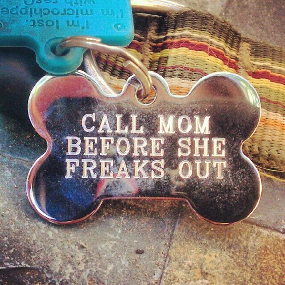 """For Tink's Stocking   I put """"Call Mom, she's freaking!"""" on the back of a laser-engraved tag at Pet Smart (my name & number on the other side) - no one will ever see it but ME, if I'm careful (which I AM!) - but it makes me laugh. Would make GREAT ornaments or pet stocking ID's (w/ dog's name engraved on other side) ~mgh"""