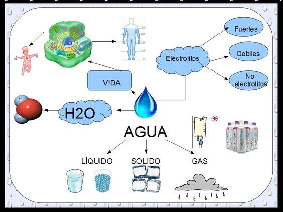 Mapa mental sobre el agua