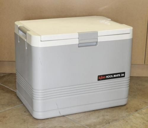 Amazing Igloo Koolmate Kool Mate 36 Quart Electric Cooler Warmer Box Ice Easy Diy Christmas Decorations Tissureus
