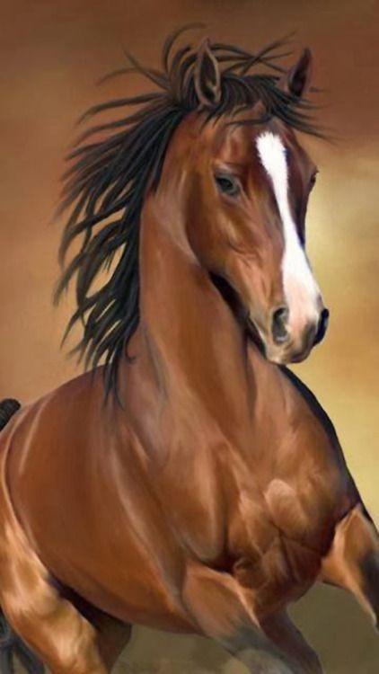 """На 03 Май 2014, те ще """"Бягайте за розите"""" в Чърчил Даунс.  Един ранен фаворит е Калифорния Chrome яздени от Хосе Samraat.  Без съмнение това ще бъде голямо състезание, когато най-добрите коне в света отведе до пистата и говорител казва """"и, че те са на разстояние."""":"""
