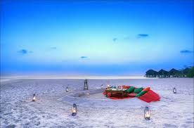 picnic on beach - Google Search