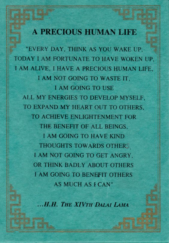 Great quote from the Dalai Lama