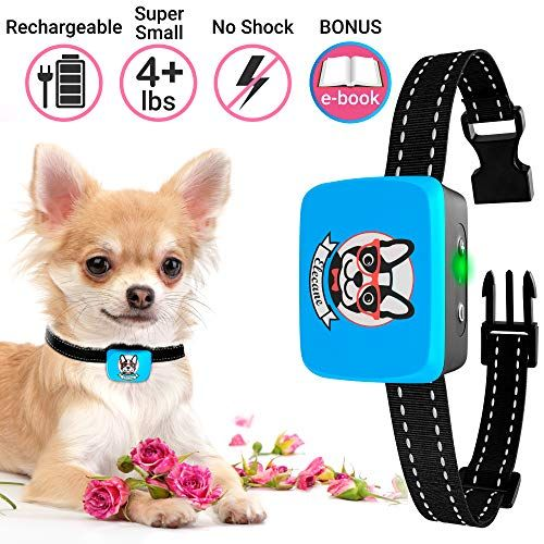 Bark Collar Small Dog Rechargeable Dog Barking Collar For Small