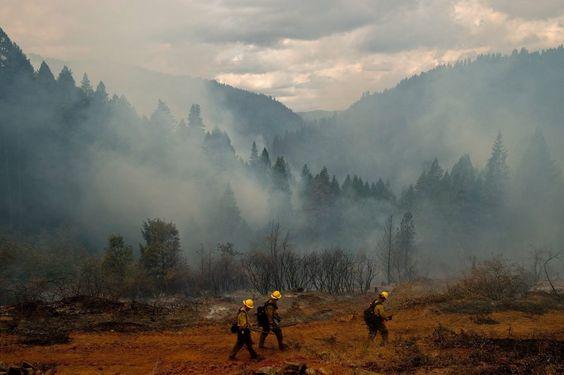 Feuerwehrleute bei Pollock Pines: Regelmäßig kommt es zu Waldbränden in Kalifornien. In diesem Jahr ist die Situation allerdings besonders kritisch: In dem Bundesstaat herrscht extreme Dürre.