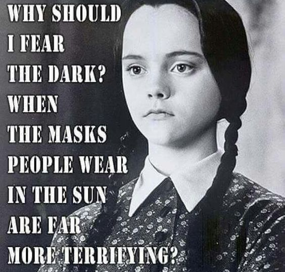 Wednesday Addams Meme Funny : Wednesday … pinteres…