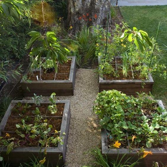 vegetable garden design, backyard landscaping ideas
