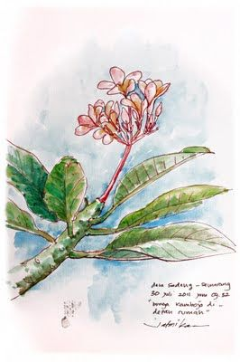 Jatmika Sketch Drawing Drawing Sketches Drawings Art