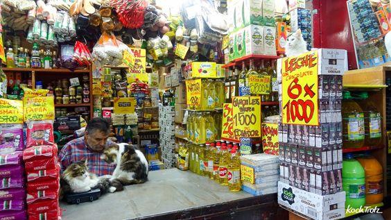 Mein Reisebericht zu unserer Südamerika-Reise - ein paar Tage Santiago de Chile - Teil 3