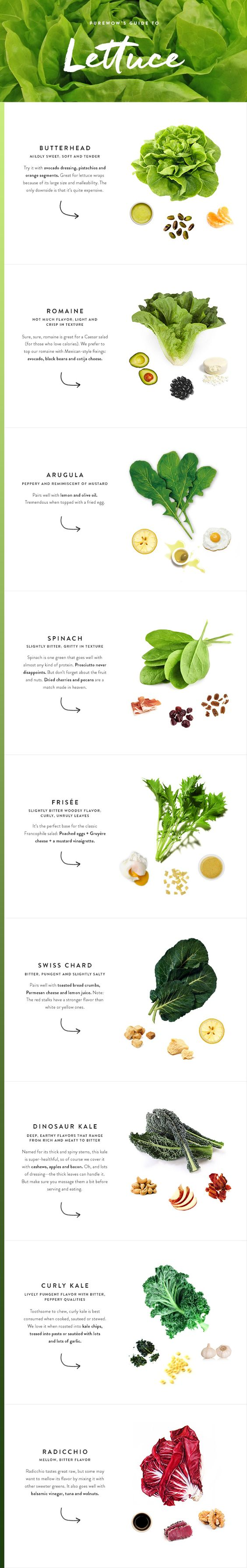 Here is everything you ever wanted to know about lettuce. 9 different types, infinite salad combinations.