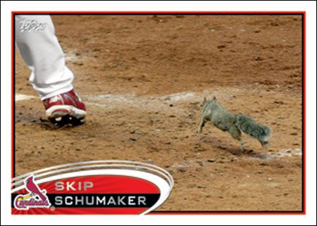 Skip Schumaker's new baseball card features the rally squirrel … but not Skip Schumaker