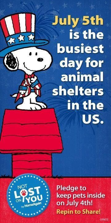 July 5th is the busiest day for animal shelters.  Please keep your dogs safe on this holiday.
