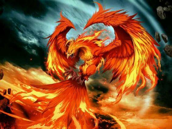 ... Phoenix ...