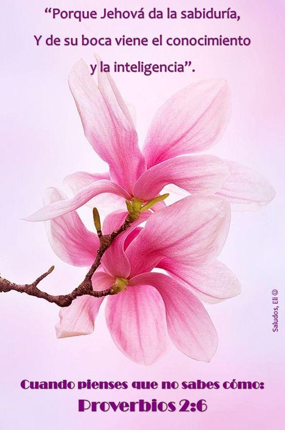 Proverbios 2:6 Reina-Valera 1960 (RVR1960)  Porque Jehová da la sabiduría, Y de su boca viene el conocimiento y la inteligencia.