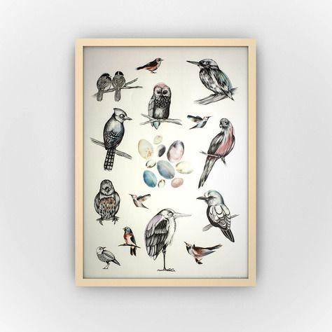 #Birds #print #druck