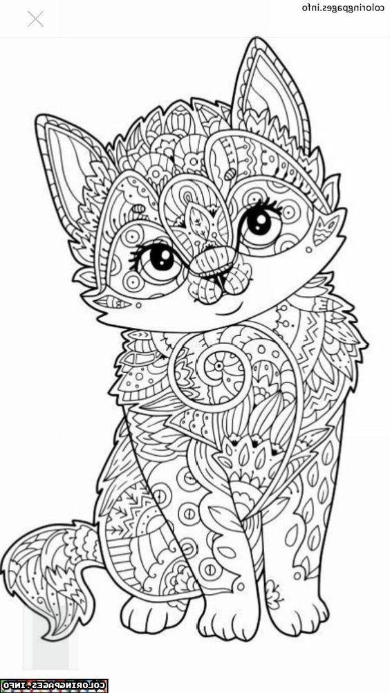 Mandala Dessin Facile Coloriage Chat Coloriage Livre Coloriage