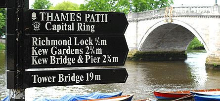 a12e72da37a3abab44bac790e1a5c88a  river thames dog lovers - Thames River Boat To Kew Gardens
