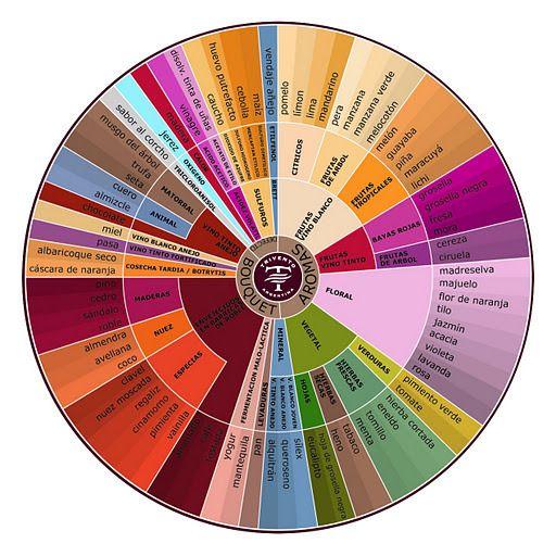 Rueda de Aromas / Aromas tasting wheel  #vino #Rioja #wine
