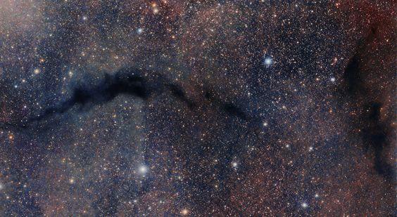 Nebulosa Oscura LDN 204.
