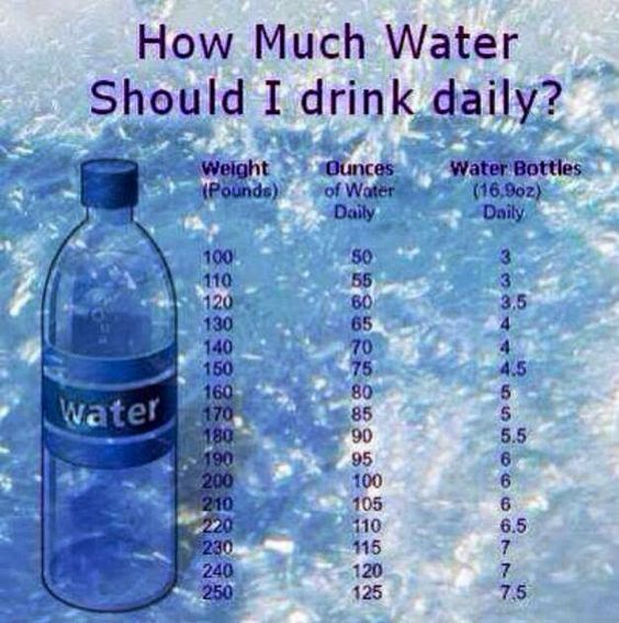 How Much Water Should A Dog Drink A Day