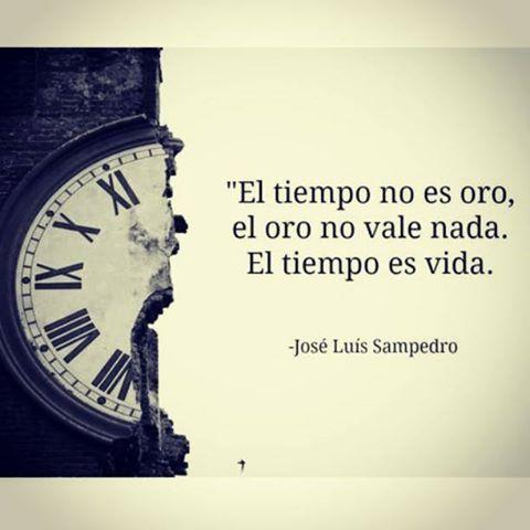 Frase del famosos Saramago: