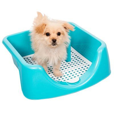 Favorite High Fence Dog Training Tray With Post Included Indoor Dog Potty Dog Potty Covered Dog Bed