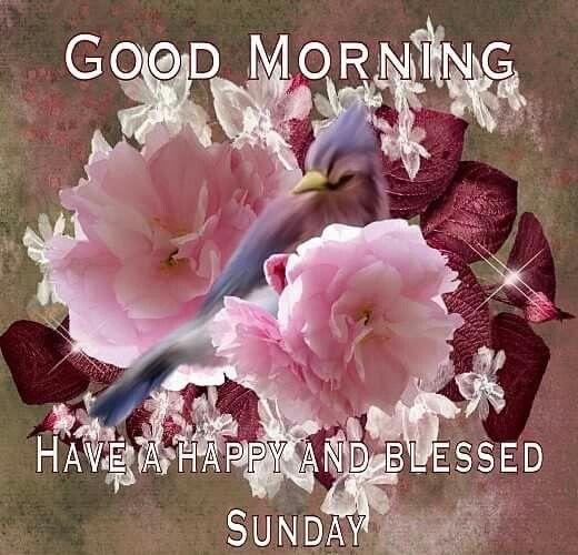 Sunday Blessings!