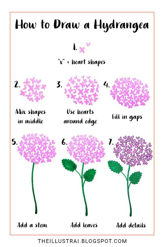 In This Drawing Tutorial Learn How To Draw A Hydrangea Flower By Using Two Basic Shapes Flower Drawing Tutorials Flower Drawing Flower Sketches