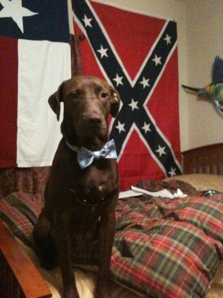 #frat http://media-cache7.pinterest.com/upload/55872851596593624_txiOqGW7_f.jpg lindsratt sweet southern boys