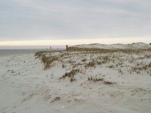 Nordsee, Meer