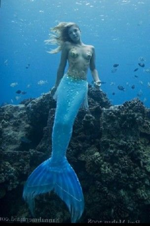 Photos Real Mermaids Found And Mermaids On Pinterest