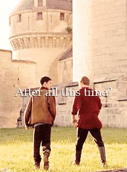 I miss Merlin and Arthur so much