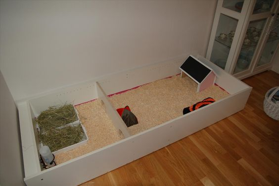 Guinea pigs pigs and guinea pig cages on pinterest for Guinea pig cage made from bookshelf